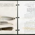 Meinertzhagen's diary